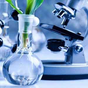 Best Biotechnology Colleges in Chennai, India - AVIT